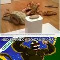 aq é brasil