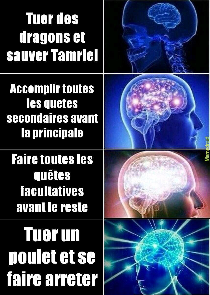 Skyrim in a nutshell - meme