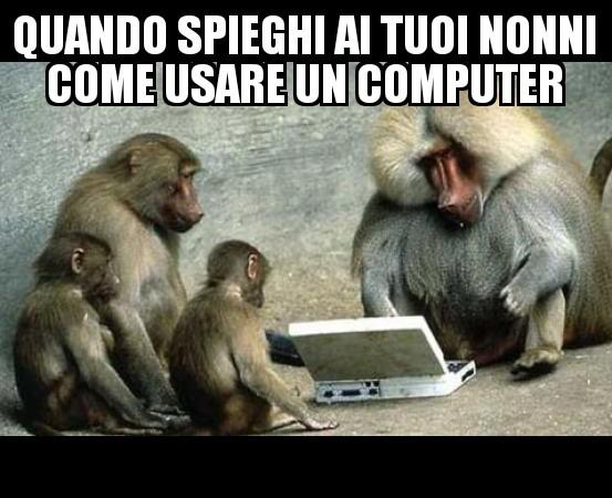 Scimmie - meme