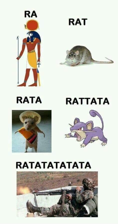 Roi des rats. - meme