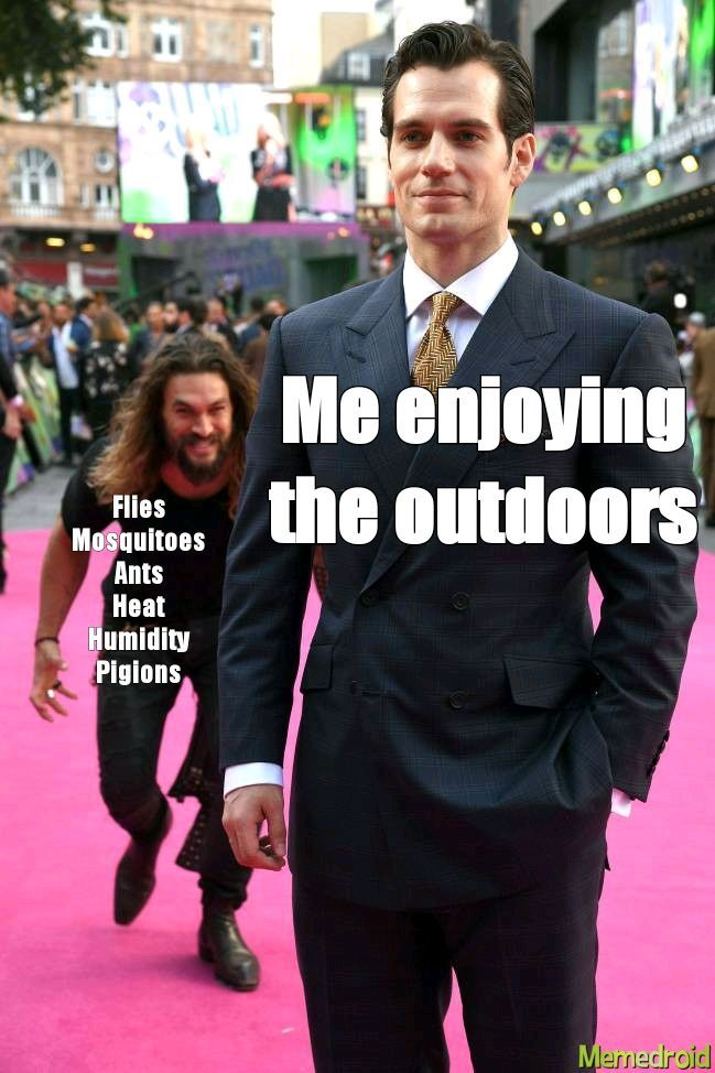Summer is the best time of the year - meme