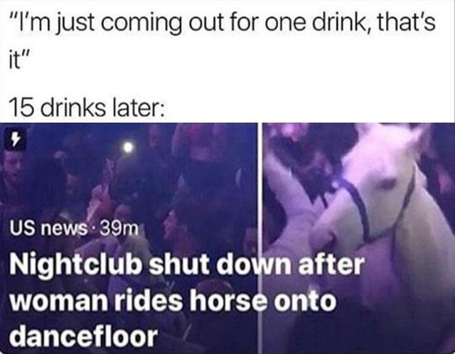 Nightclub shut down after woman rides horse onto dancefloor - meme