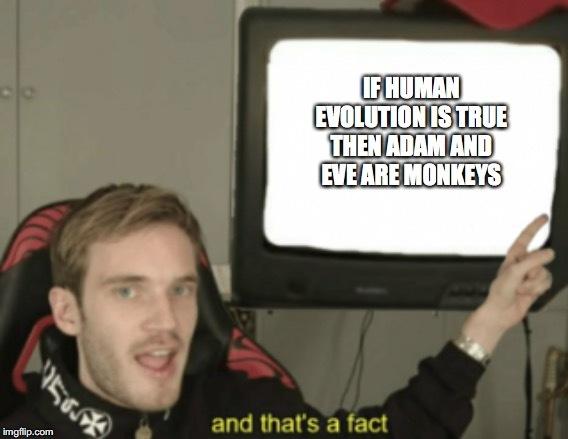 human evolution - meme
