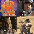 I   a dragon
