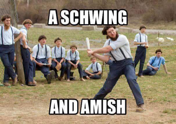 I just want you to know that Amish you. - meme