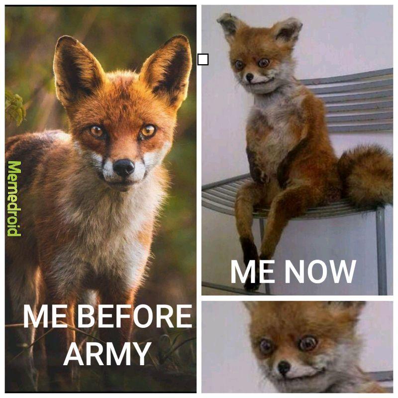 Army life - meme