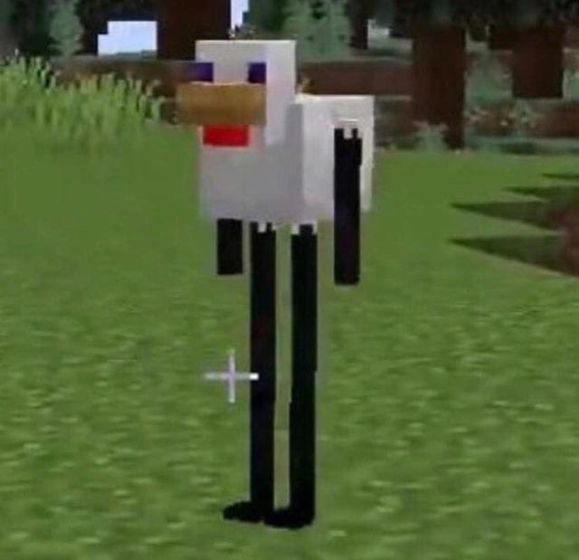 ender galinha fodase - meme