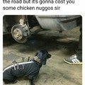 Dachshund Datsun mechanic
