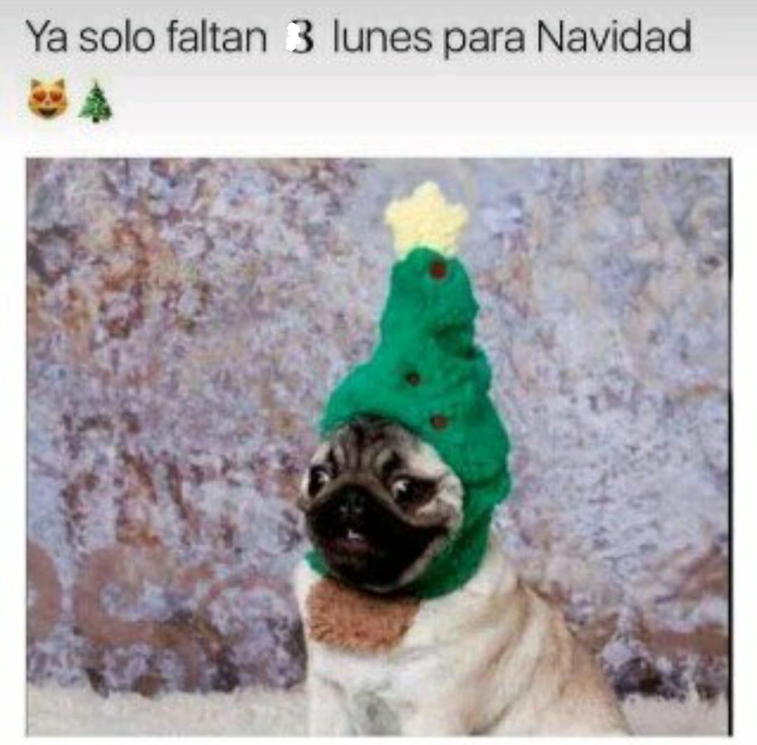 Feliz Navidad a todos - meme