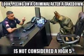 Police Dog Oof - meme