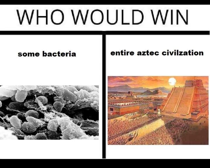Aztecs where kinda gay - meme