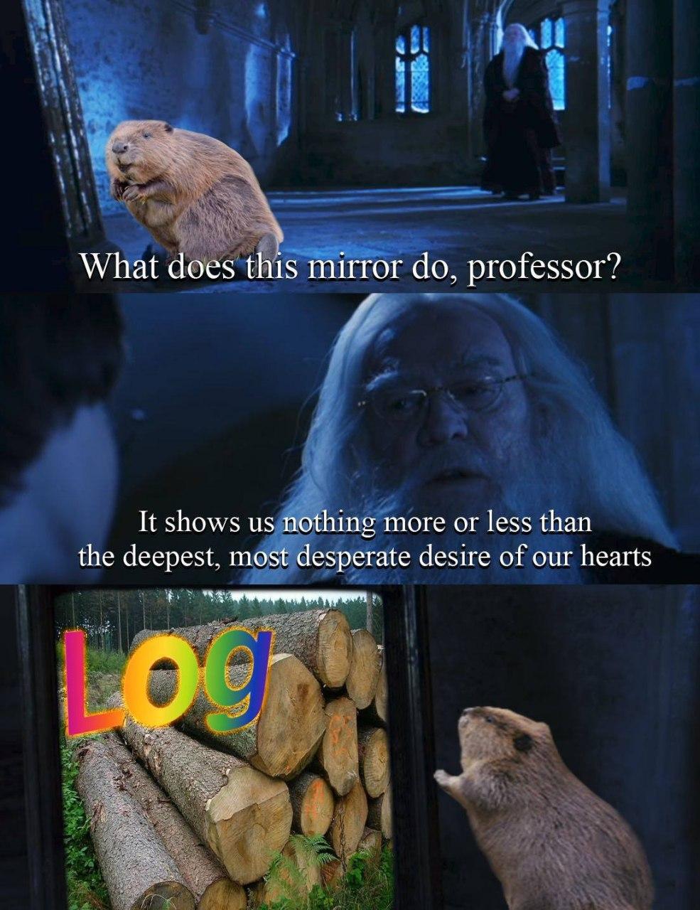 dongs in a log™ - meme