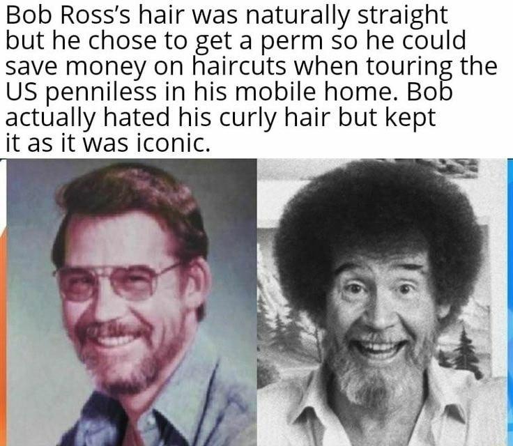 Memes Love Bob Ross