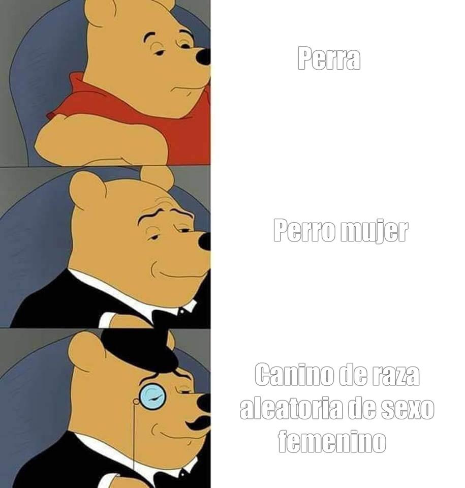winnie de pooh - meme