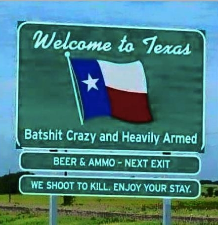 ANOTHER Texas boarder crossing - meme