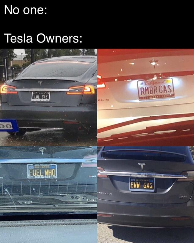 Tesla owners - meme