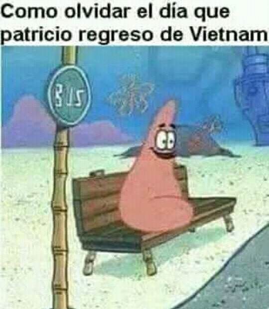 Vietnam destruyó a Patricio  :/ - meme
