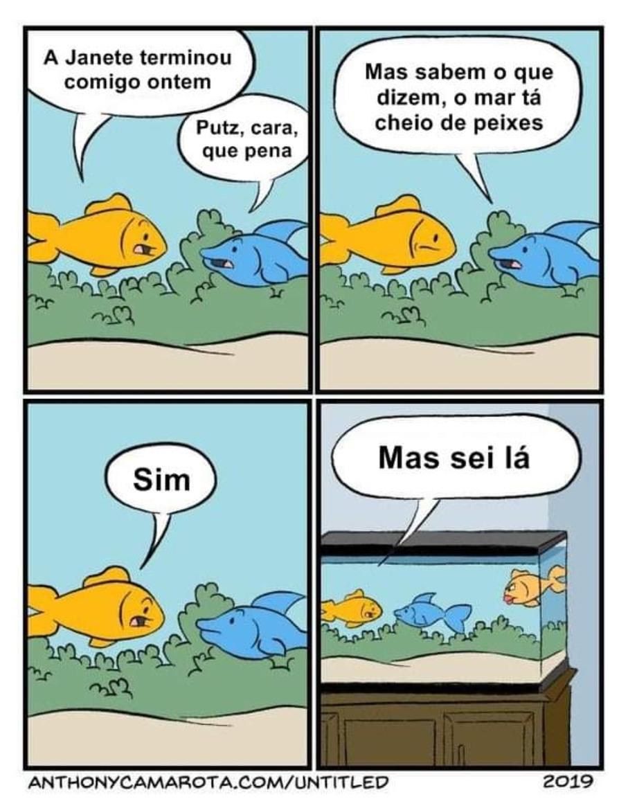 O mar tá cheio de peixes - meme