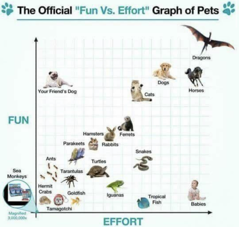 Look at this graph - meme
