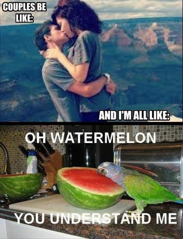 Oh, watermelon. - meme