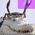 Tanto los Youtubers como la página dependen de ellas