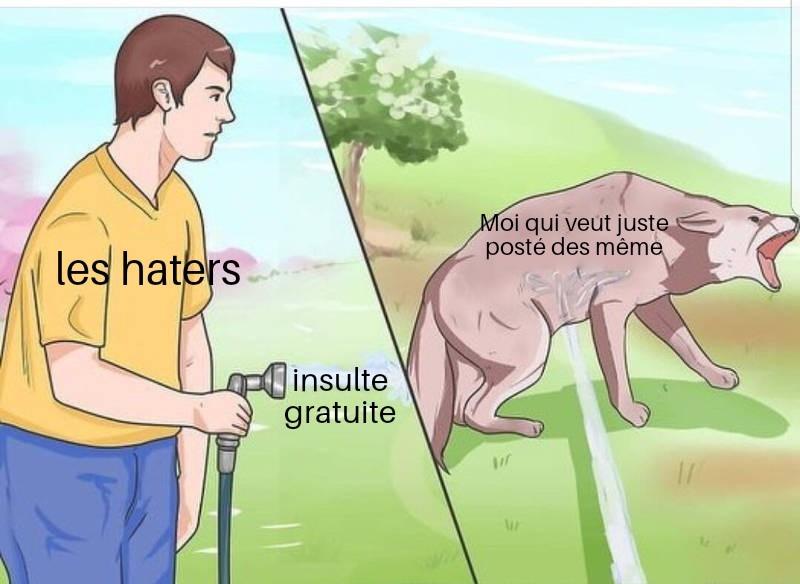 Vive le paté - meme