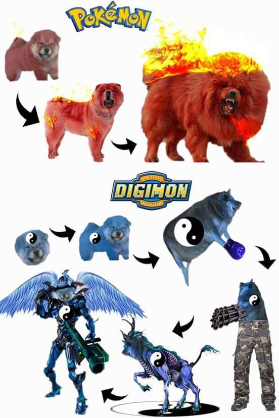 Digimon head cha la - meme