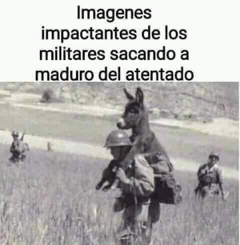Maburro - meme