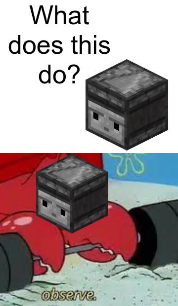 Observe - meme