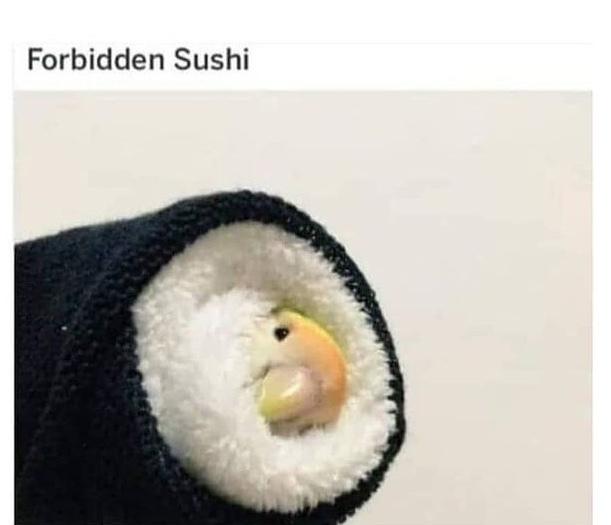bird sushi - meme