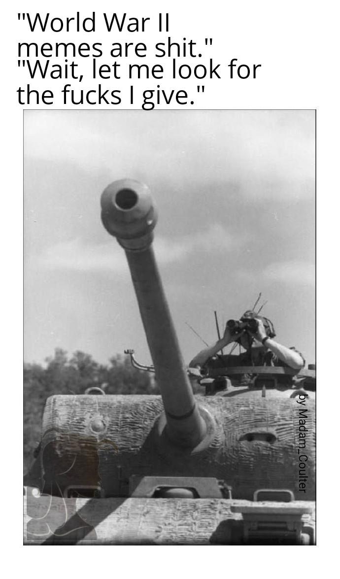 Panzer V - meme