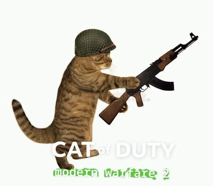 cat of duty modern warfare 2 - meme