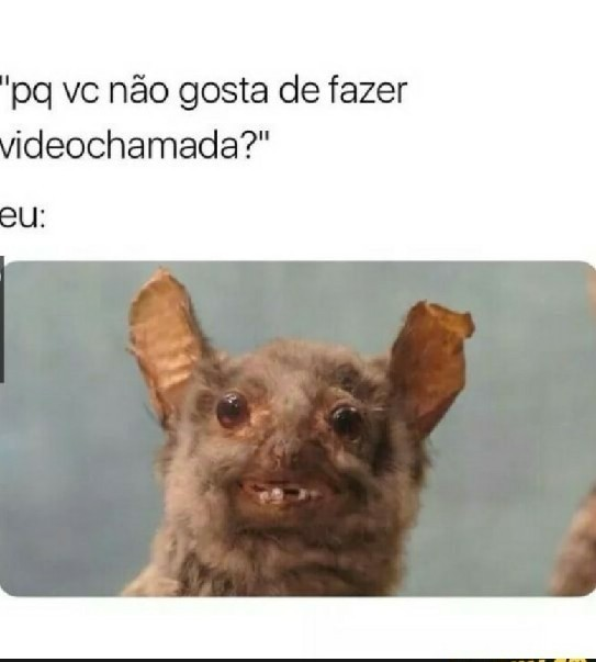 Absolutamente eu - meme