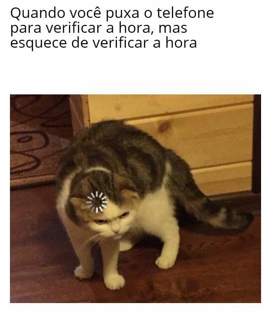 Fato - meme