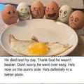 death of an egg
