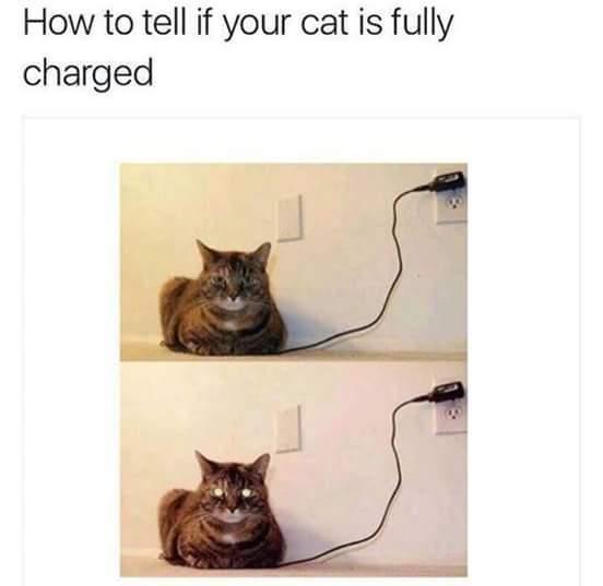 Power on! - meme