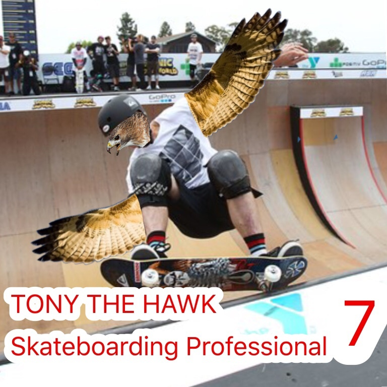 Tony The Hawk Skateboarding Professional 7 - meme