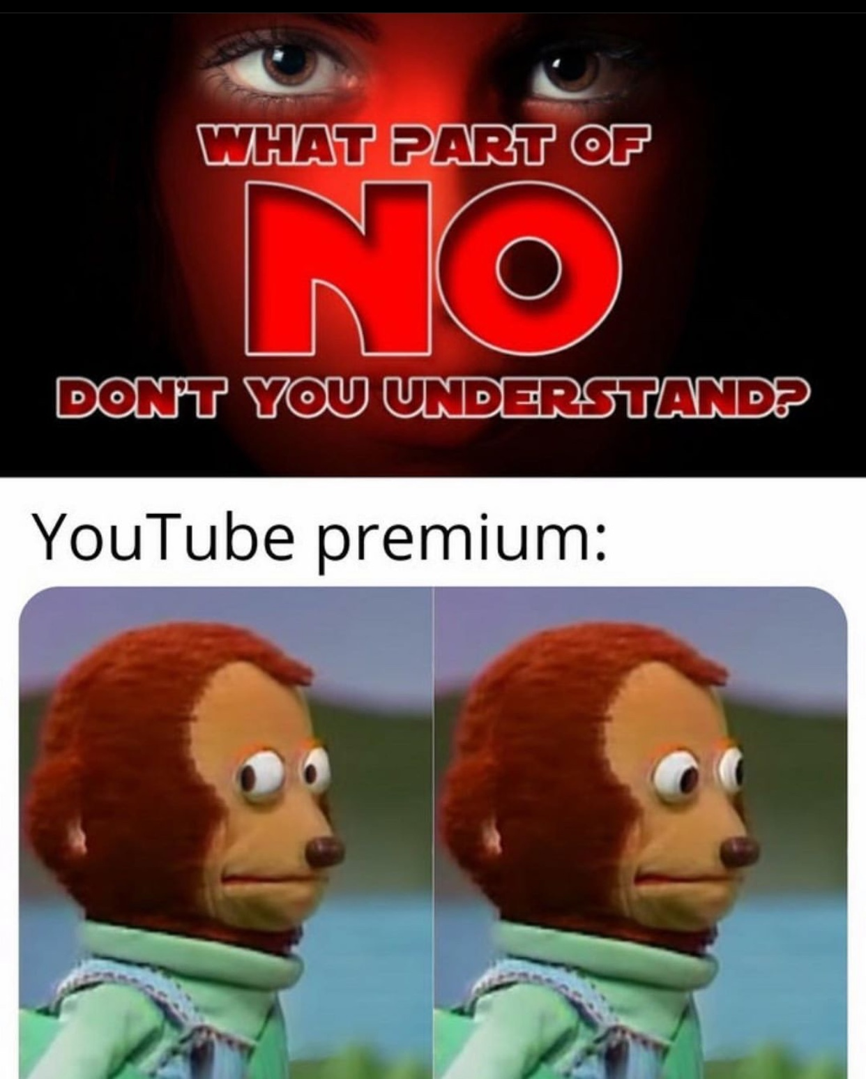 no YouTube - meme