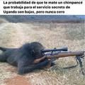 Peruano enojado