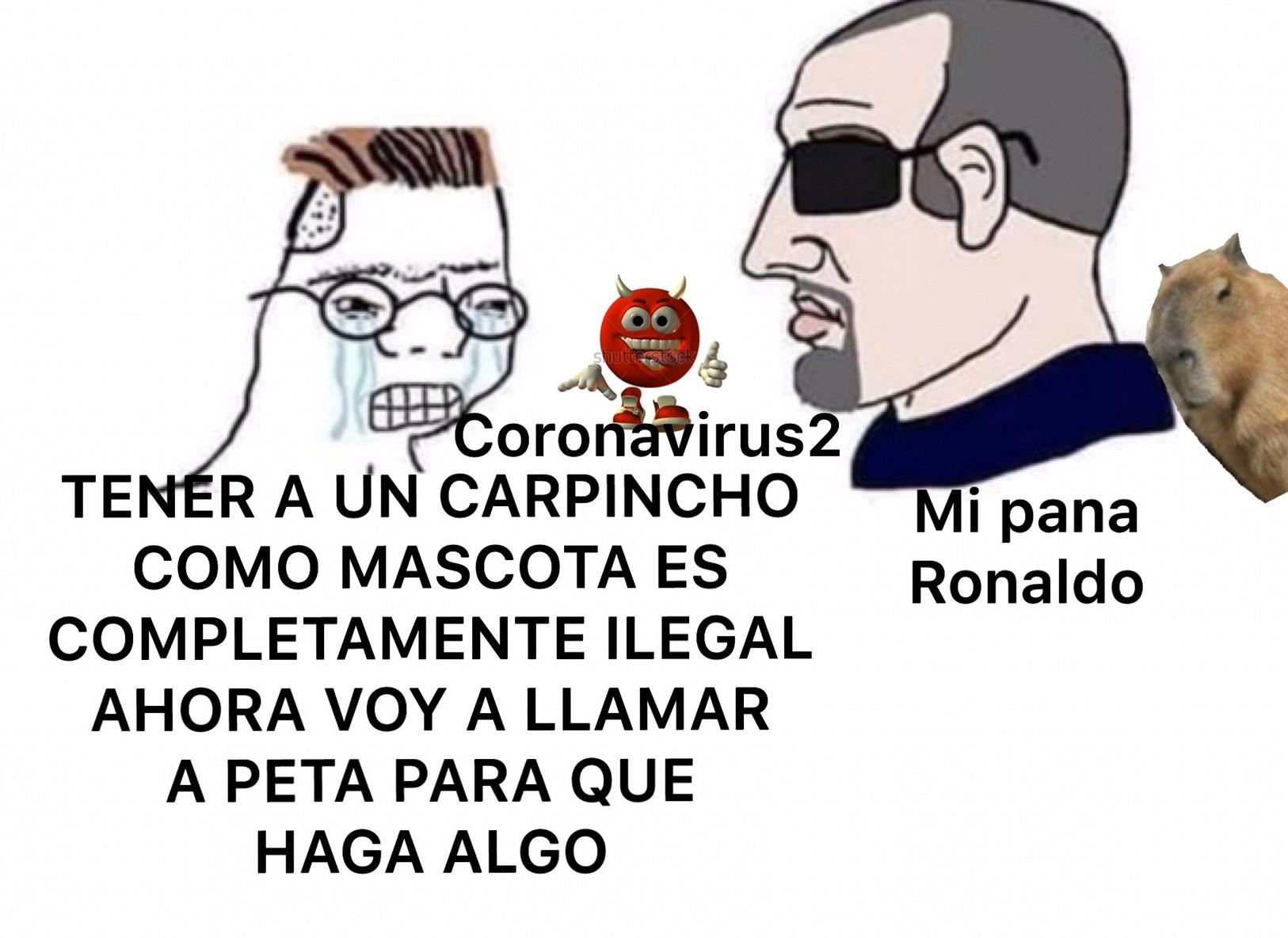 THE CARPINCHO - meme