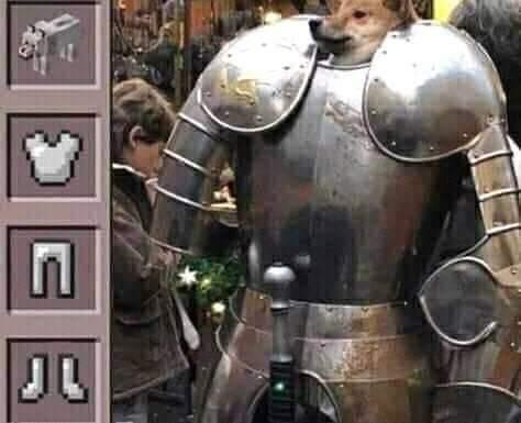Perro armadura - meme