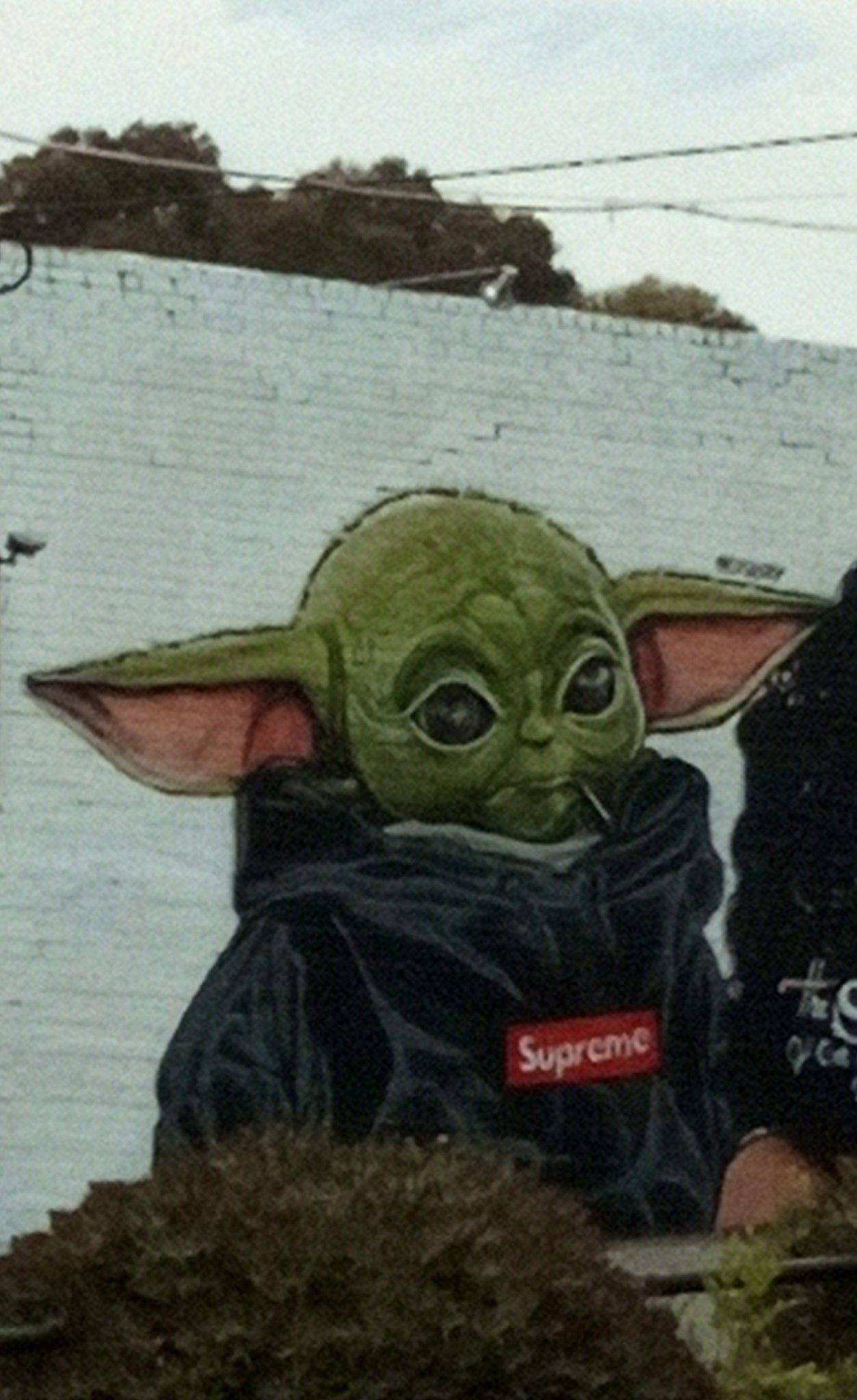 Baby Yoda on a wall - meme
