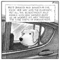 oh wise doggo