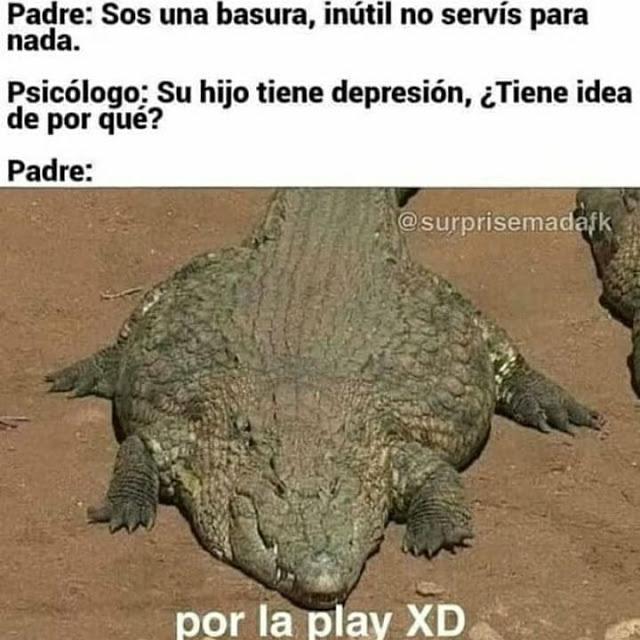 la pley *c rie* - meme