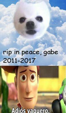 Un grande Gabe - meme