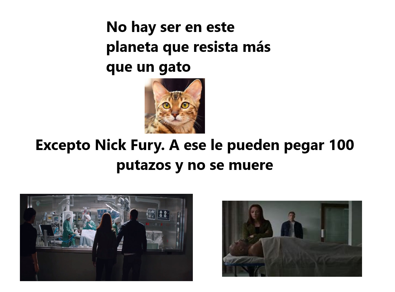 Nick Fury un dios - meme