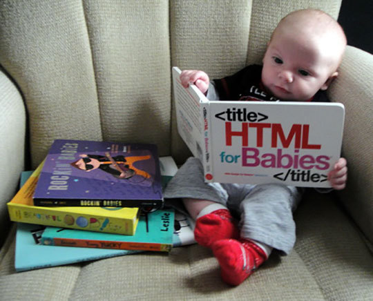 HTML for Beginners - meme