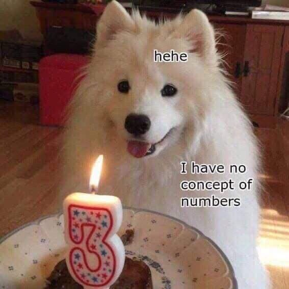 Doge birthday - meme