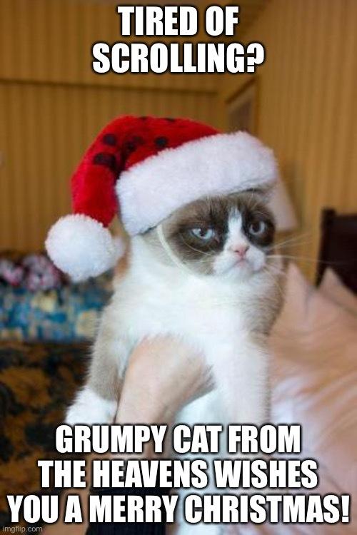 Merry Christmas bois. 2020s almost over. - meme