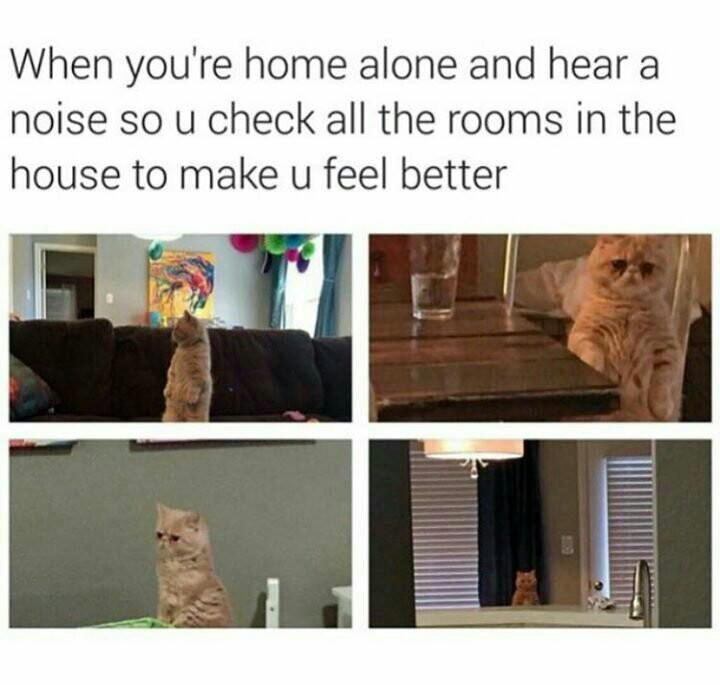 I'm always alone - meme